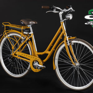 bicicletta-elettrica-e-bike-alpina-a1-donna